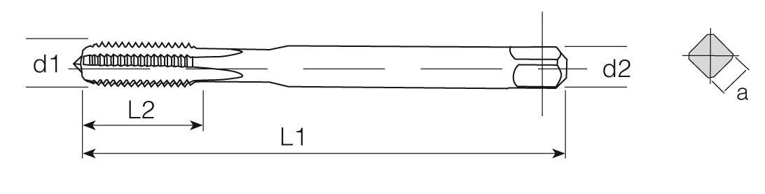 PM Din 371 Machine Taps Straight Flute -High Speed