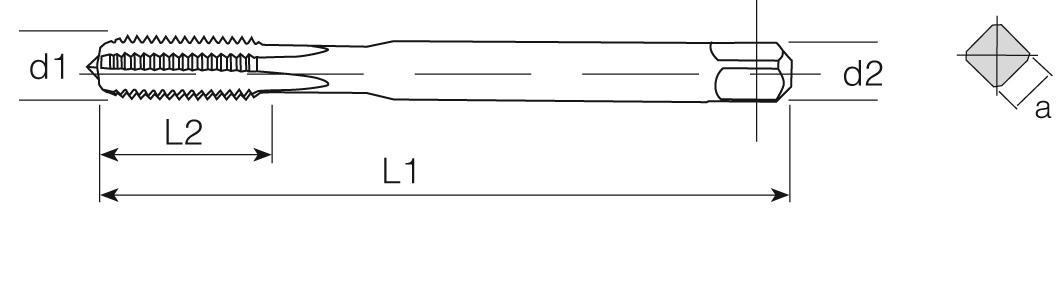 PM Din 376 Machine Taps Straight Flute - Cast Iron